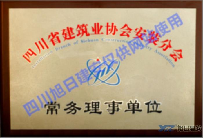 四川省建筑业协会常务理事单位